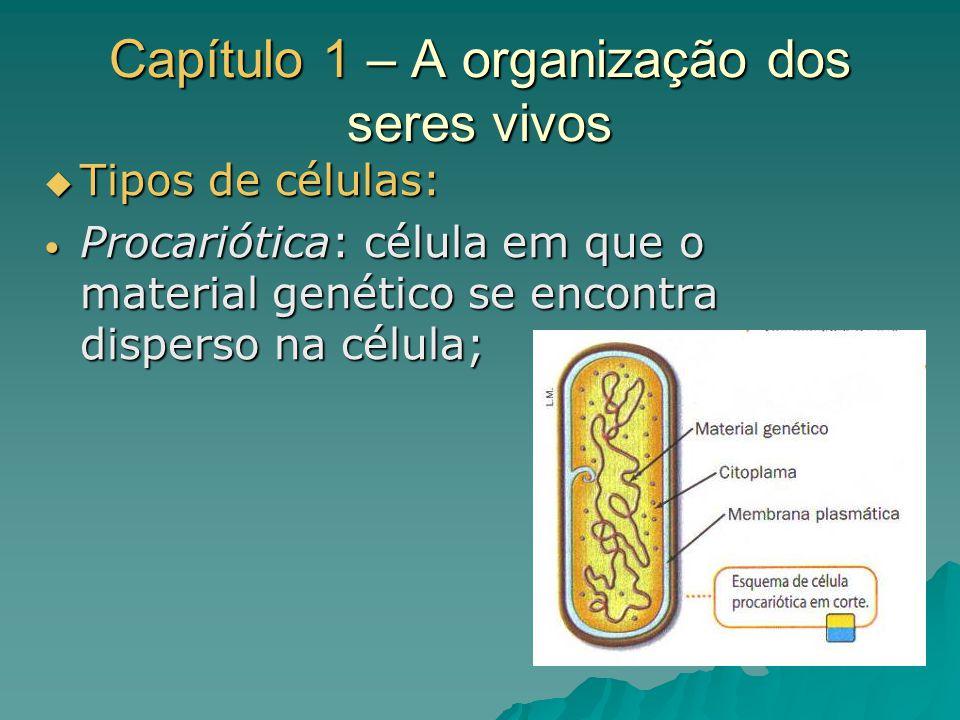 Capítulo 1 – A organização dos seres vivos Tipos de células: Tipos de células: Eucariótica: célula em que o material genético se encontra dentro do núcleo; Eucariótica: célula em que o material genético se encontra dentro do núcleo;