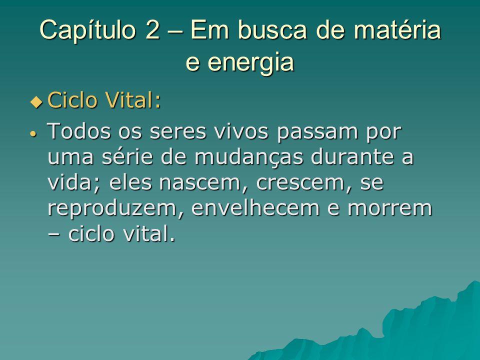 Capítulo 2 – Em busca de matéria e energia Ciclo Vital: Ciclo Vital: Todos os seres vivos passam por uma série de mudanças durante a vida; eles nascem