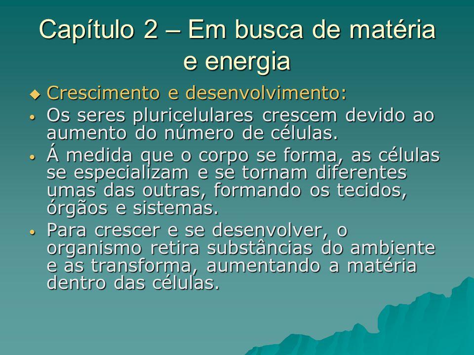Capítulo 2 – Em busca de matéria e energia Funções do alimento: Funções do alimento: Crescimento e desenvolvimento; Crescimento e desenvolvimento; Renovação do corpo; Renovação do corpo; Produção de energia.