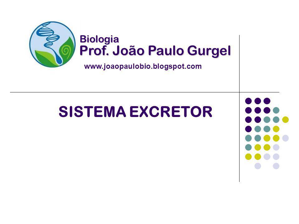 SISTEMA EXCRETOR Biologia Prof. João Paulo Gurgel www.joaopaulobio.blogspot.com