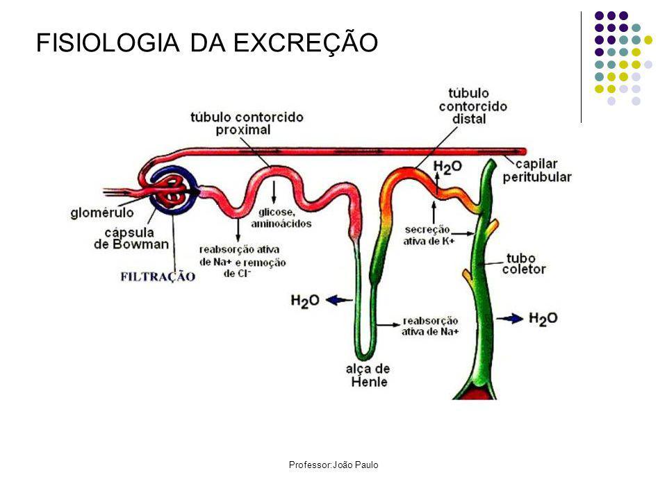 Professor:João Paulo