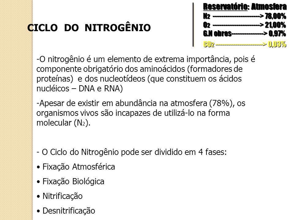 CICLO DO NITROGÊNIO -O nitrogênio é um elemento de extrema importância, pois é componente obrigatório dos aminoácidos (formadores de proteínas) e dos