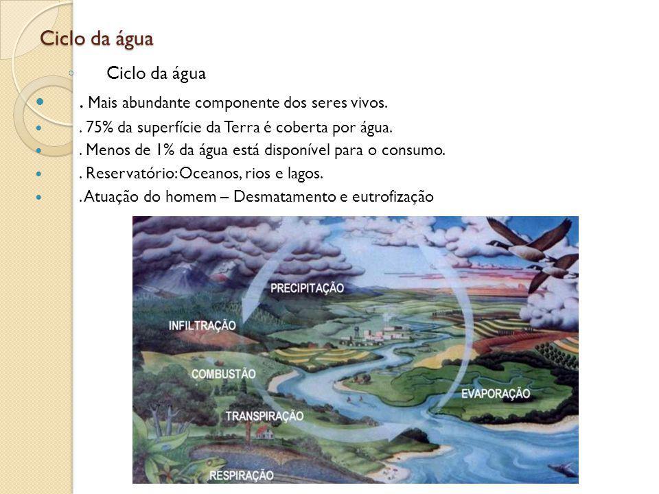 Ciclo do Carbono.Presente na estrutura de todas as substâncias orgânicas..