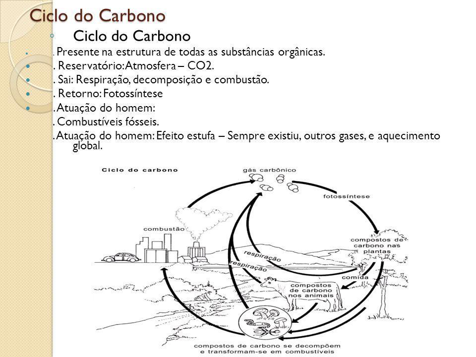 Ciclo do Carbono. Presente na estrutura de todas as substâncias orgânicas.. Reservatório: Atmosfera – CO2.. Sai: Respiração, decomposição e combustão.