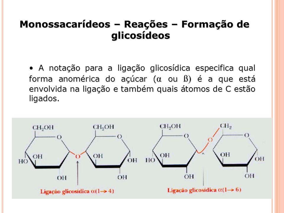 A notação para a ligação glicosídica especifica qual forma anomérica do açúcar ( α ou ß) é a que está envolvida na ligação e também quais átomos de C