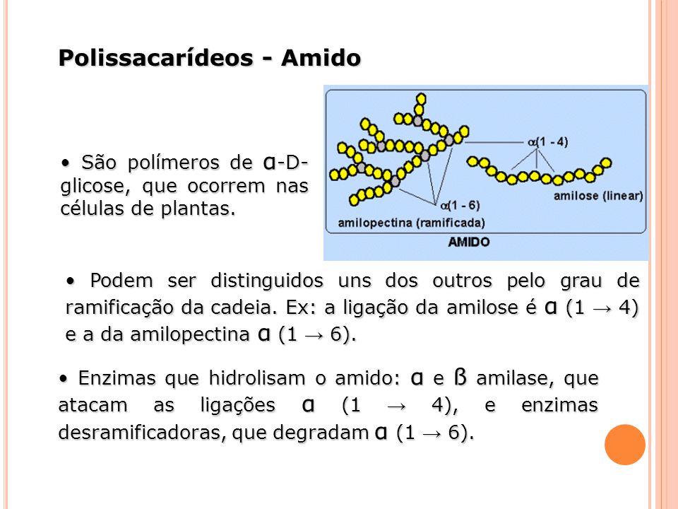 Polissacarídeos - Amido São polímeros de α -D- glicose, que ocorrem nas células de plantas. São polímeros de α -D- glicose, que ocorrem nas células de