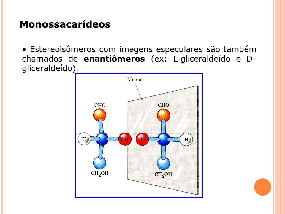 Monossacarídeos Estereoisômeros com imagens especulares são também chamados de enantiômeros (ex: L-gliceraldeído e D- gliceraldeído). Estereoisômeros