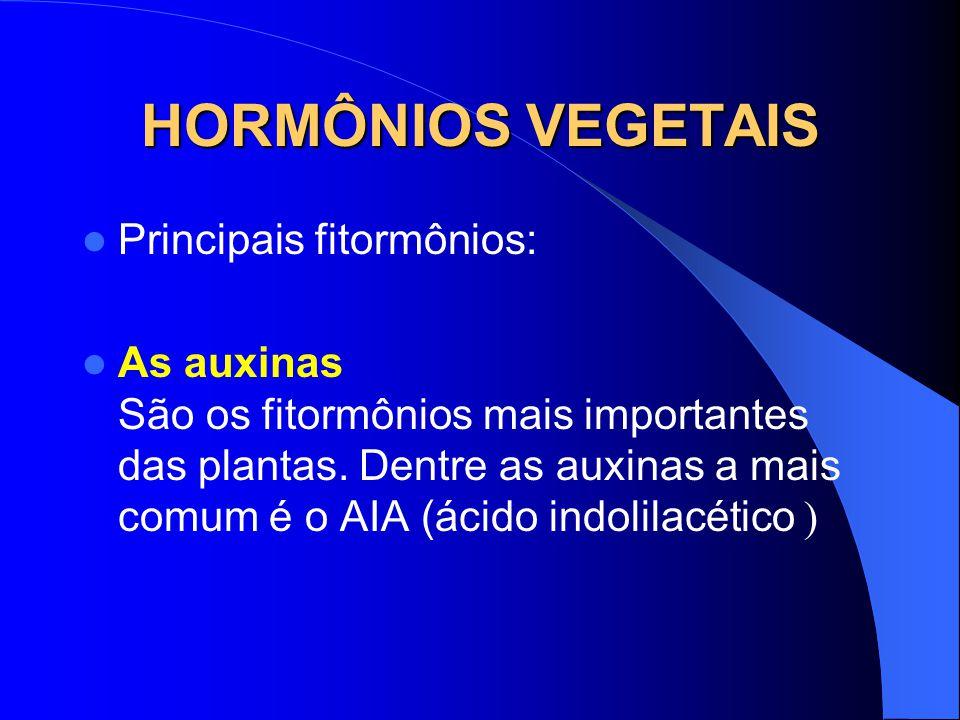HORMÔNIOS VEGETAIS Principais fitormônios: As auxinas São os fitormônios mais importantes das plantas.