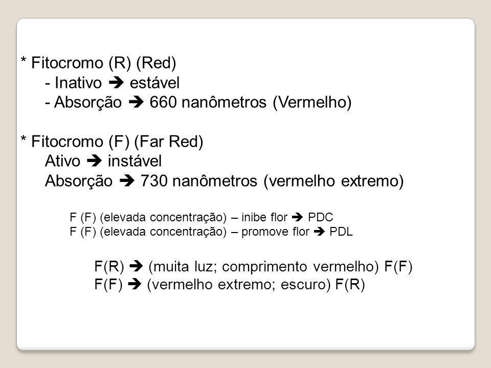* Fitocromo (R) (Red) - Inativo estável - Absorção 660 nanômetros (Vermelho) * Fitocromo (F) (Far Red) Ativo instável Absorção 730 nanômetros (vermelh
