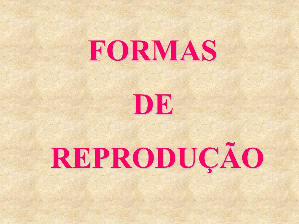 FORMAS FORMAS DE DEREPRODUÇÃO