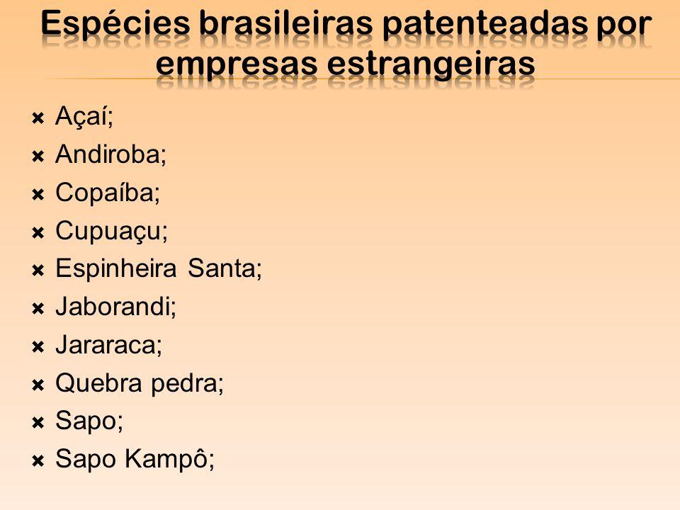 Açaí; Andiroba; Copaíba; Cupuaçu; Espinheira Santa; Jaborandi; Jararaca; Quebra pedra; Sapo; Sapo Kampô;