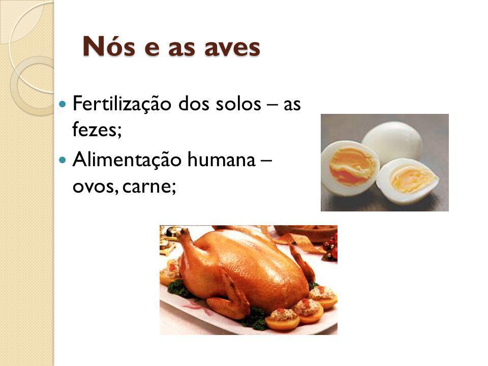 Nós e as aves Fertilização dos solos – as fezes; Alimentação humana – ovos, carne;