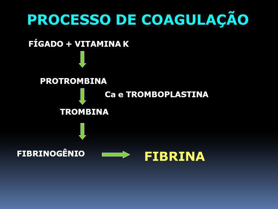 PLAQUETAS (TROMBÓCITOS) Origem- Células megacariócitos Número normal- 300 mil/ mm 3