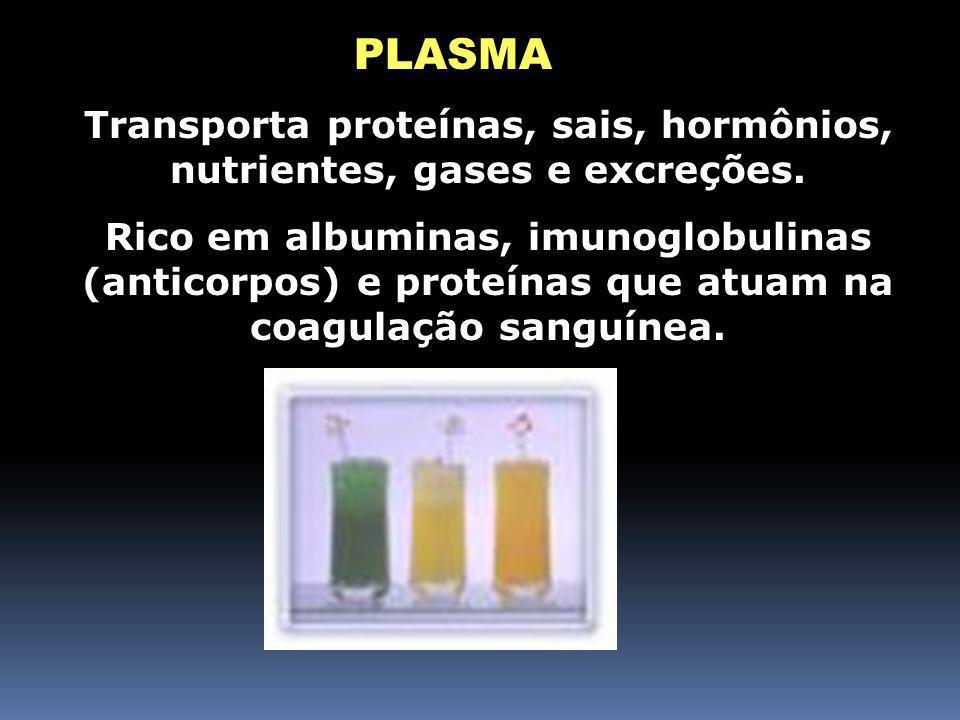 Componentes do Sangue