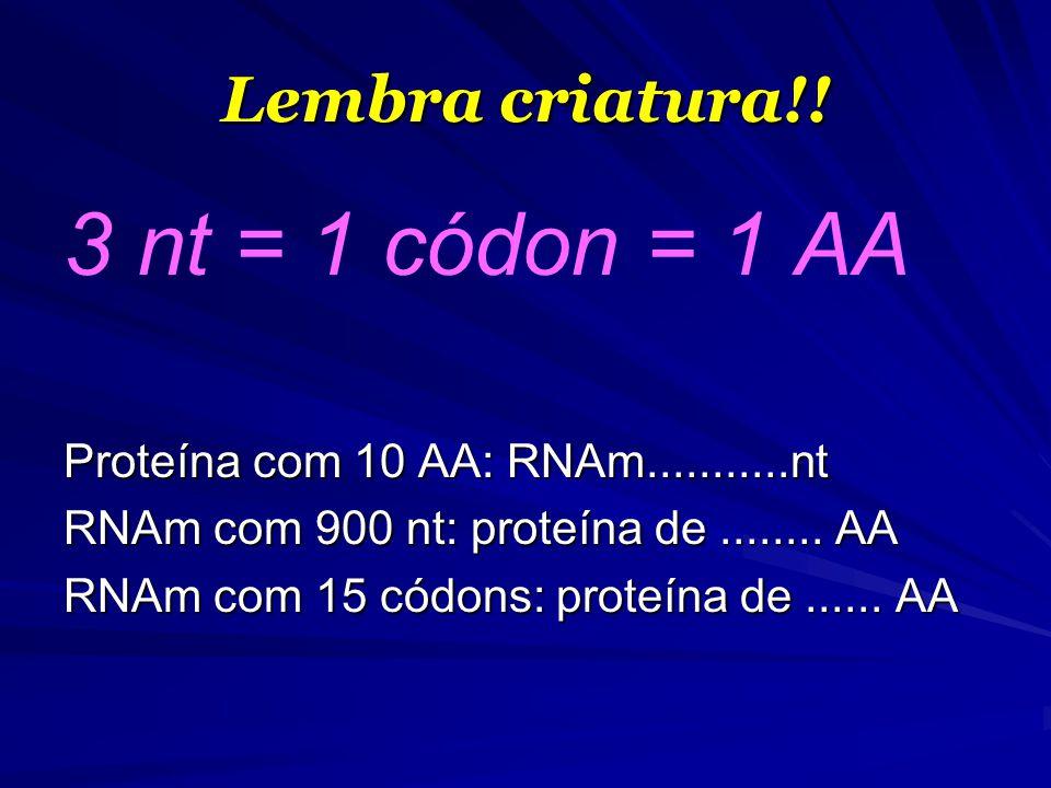 Lembra criatura!! 3 nt = 1 códon = 1 AA Proteína com 10 AA: RNAm...........nt RNAm com 900 nt: proteína de........ AA RNAm com 15 códons: proteína de.