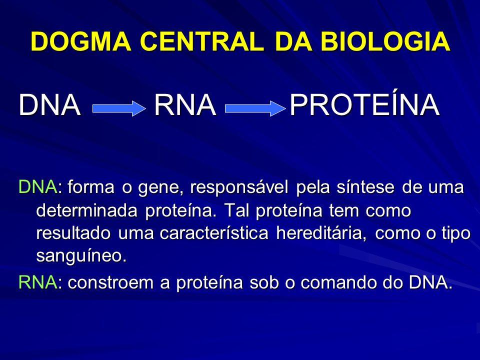 DOGMA CENTRAL DA BIOLOGIA DNA RNA PROTEÍNA DNA: forma o gene, responsável pela síntese de uma determinada proteína. Tal proteína tem como resultado um