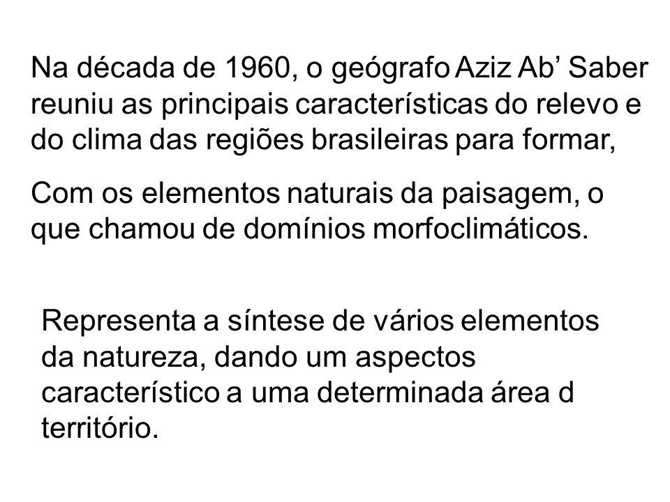 Mata dos Cocais Vegetação arbórea; Vegetação de clima de transição, entre o quente/úmido da Amazônia e o quente/seco da caatinga; Constituída por palmáceas (babaçu e carnaúba) Abrange, principalmente, o Maranhão.