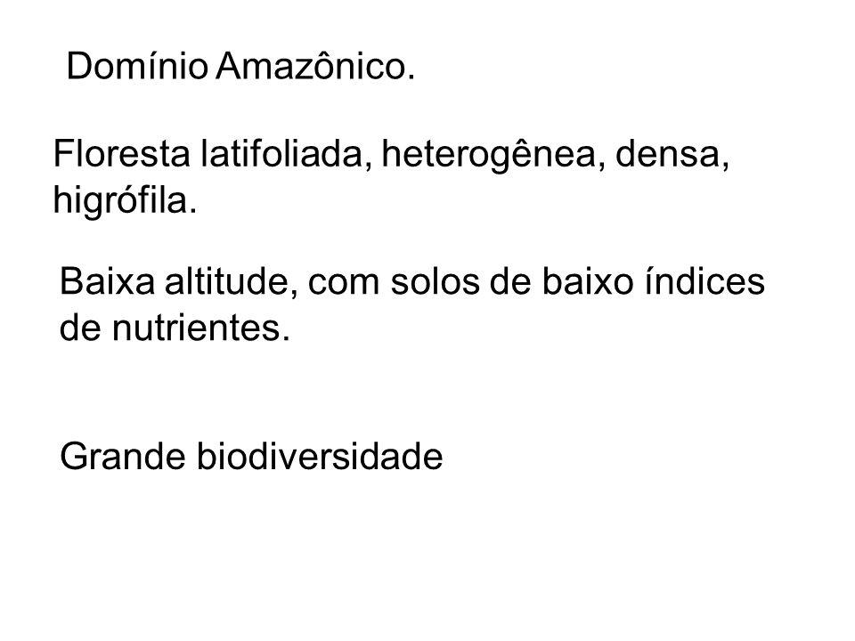 Domínio Amazônico.Floresta latifoliada, heterogênea, densa, higrófila.