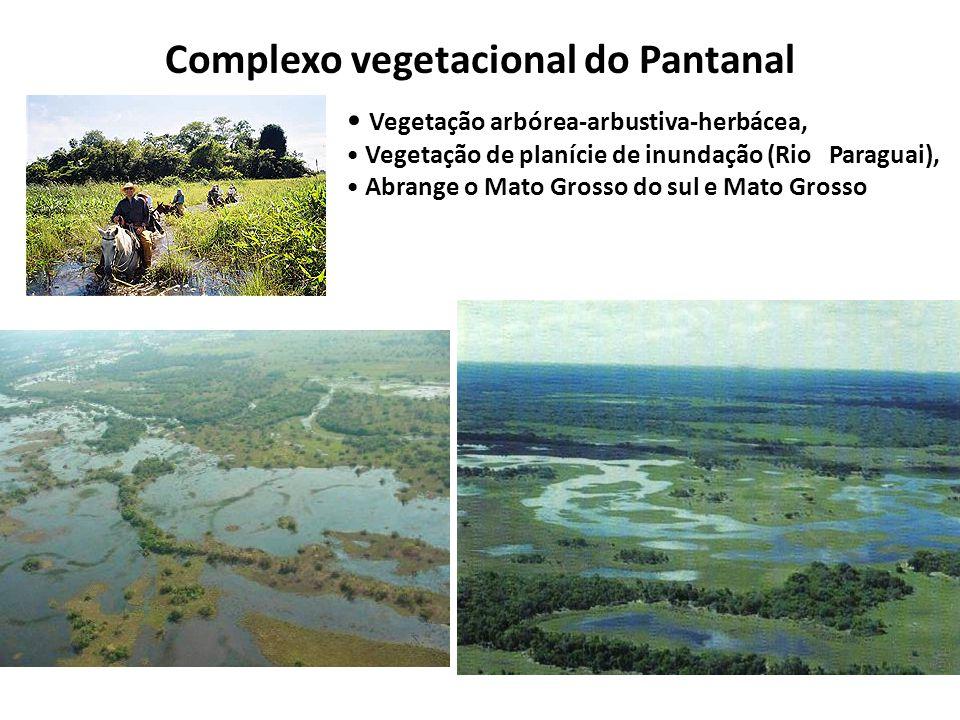 Complexo vegetacional do Pantanal Vegetação arbórea-arbustiva-herbácea, Vegetação de planície de inundação (Rio Paraguai), Abrange o Mato Grosso do sul e Mato Grosso