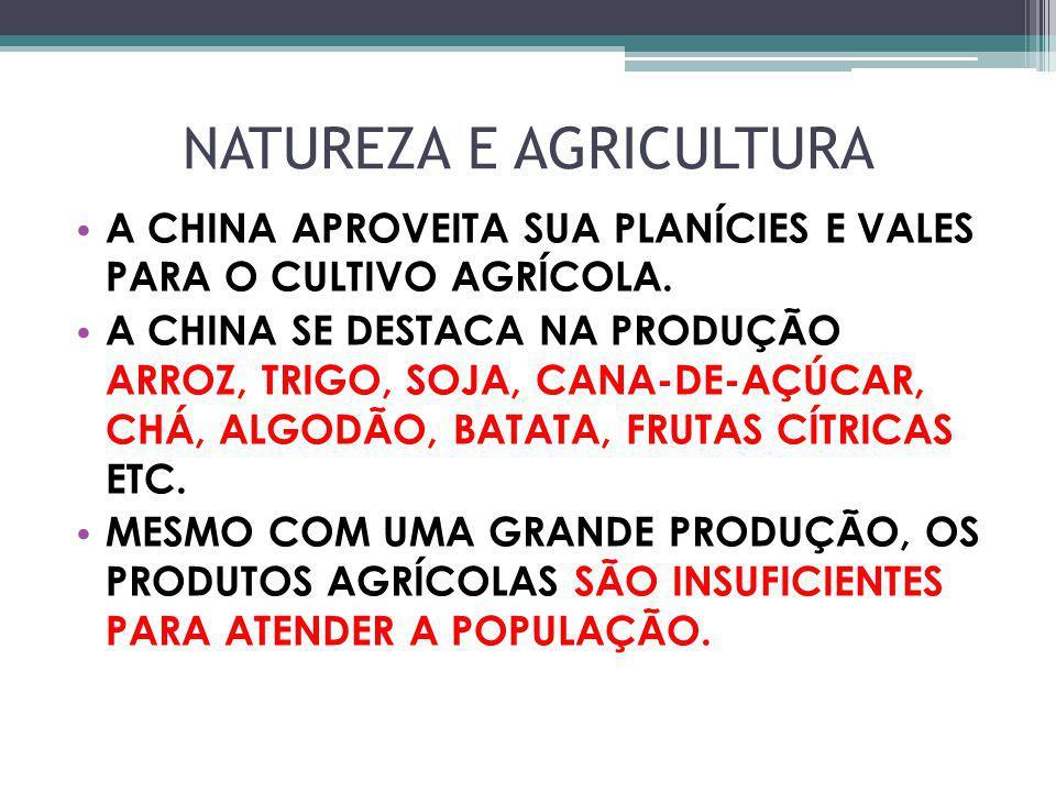 NATUREZA E AGRICULTURA A CHINA APROVEITA SUA PLANÍCIES E VALES PARA O CULTIVO AGRÍCOLA. A CHINA SE DESTACA NA PRODUÇÃO ARROZ, TRIGO, SOJA, CANA-DE-AÇÚ