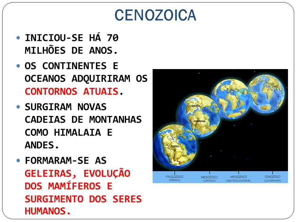 CENOZOICA INICIOU-SE HÁ 70 MILHÕES DE ANOS. OS CONTINENTES E OCEANOS ADQUIRIRAM OS CONTORNOS ATUAIS. SURGIRAM NOVAS CADEIAS DE MONTANHAS COMO HIMALAIA