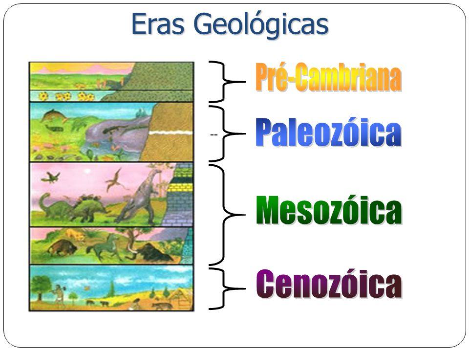 Eras Geológicas --