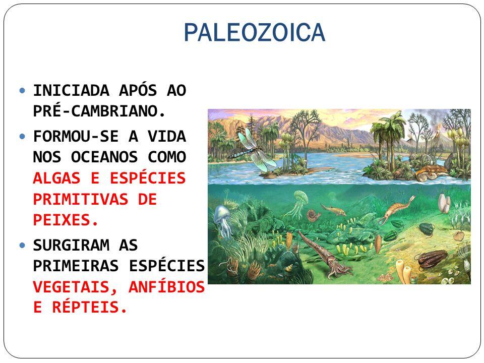 PALEOZOICA INICIADA APÓS AO PRÉ-CAMBRIANO. FORMOU-SE A VIDA NOS OCEANOS COMO ALGAS E ESPÉCIES PRIMITIVAS DE PEIXES. SURGIRAM AS PRIMEIRAS ESPÉCIES VEG