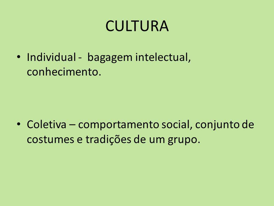 CULTURA Individual - bagagem intelectual, conhecimento. Coletiva – comportamento social, conjunto de costumes e tradições de um grupo.