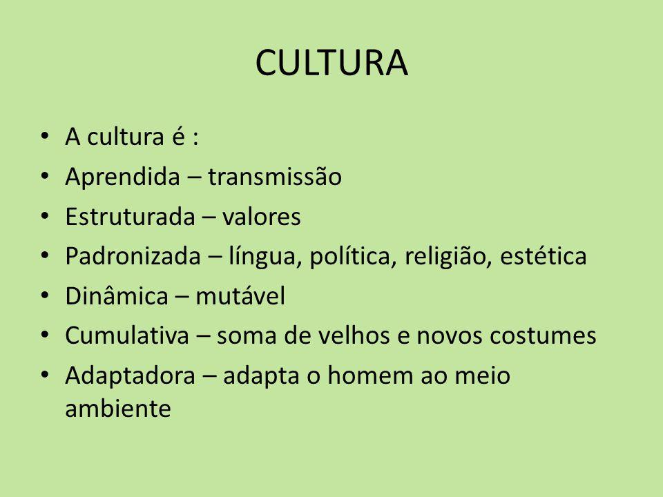 CULTURA A cultura é : Aprendida – transmissão Estruturada – valores Padronizada – língua, política, religião, estética Dinâmica – mutável Cumulativa –
