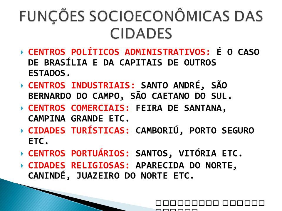 CENTROS POLÍTICOS ADMINISTRATIVOS: É O CASO DE BRASÍLIA E DA CAPITAIS DE OUTROS ESTADOS. CENTROS INDUSTRIAIS: SANTO ANDRÉ, SÃO BERNARDO DO CAMPO, SÃO