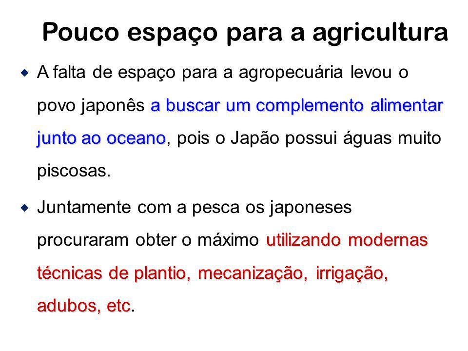 Pouco espaço para a agricultura a buscar um complemento alimentar junto ao oceano A falta de espaço para a agropecuária levou o povo japonês a buscar