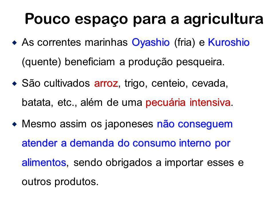 Pouco espaço para a agricultura OyashioKuroshio As correntes marinhas Oyashio (fria) e Kuroshio (quente) beneficiam a produção pesqueira. arroz pecuár