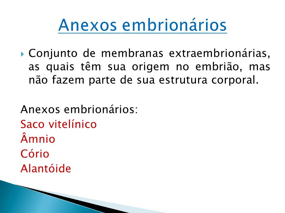 Conjunto de membranas extraembrionárias, as quais têm sua origem no embrião, mas não fazem parte de sua estrutura corporal. Anexos embrionários: Saco