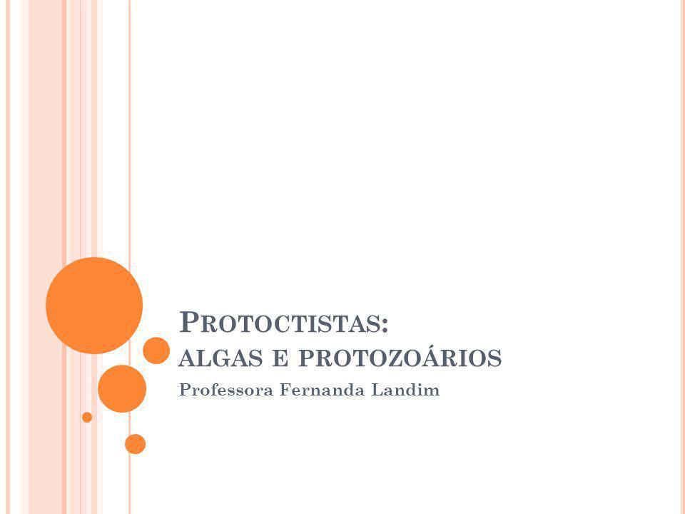 P ROTOCTISTAS Eucariontes Unicelulares ou Pluricelulares Autótrofos ou Heterótrofos Reprodução sexuada e assexuada Algas Protozoários