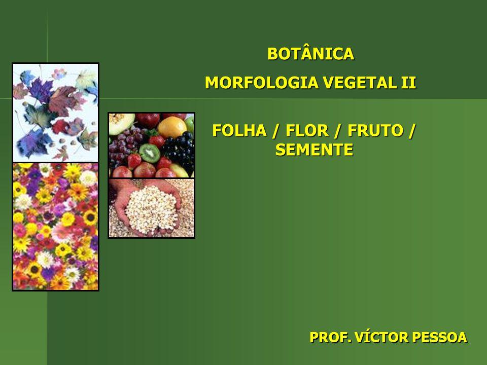 BOTÂNICA MORFOLOGIA VEGETAL II FOLHA / FLOR / FRUTO / SEMENTE PROF. VÍCTOR PESSOA