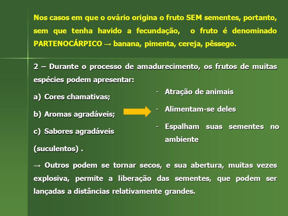 2 – Durante o processo de amadurecimento, os frutos de muitas espécies podem apresentar: a)Cores chamativas; b)Aromas agradáveis; c)Sabores agradáveis (suculentos).