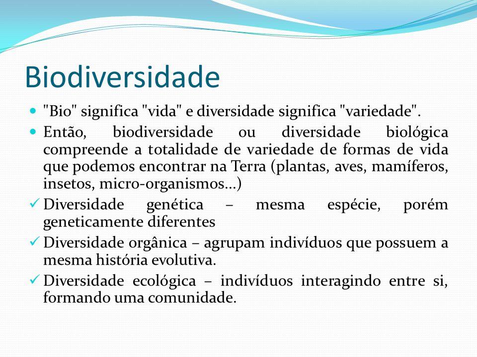 Categoria Taxonômica espécie gênero família ordem classe filo reino ReFiCOFaGE Categoria mais específica Categoria mais geral