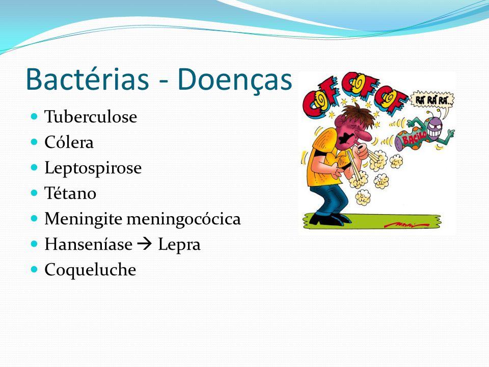 Bactérias - Doenças Tuberculose Cólera Leptospirose Tétano Meningite meningocócica Hanseníase Lepra Coqueluche