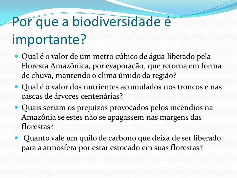 Por que a biodiversidade é importante.
