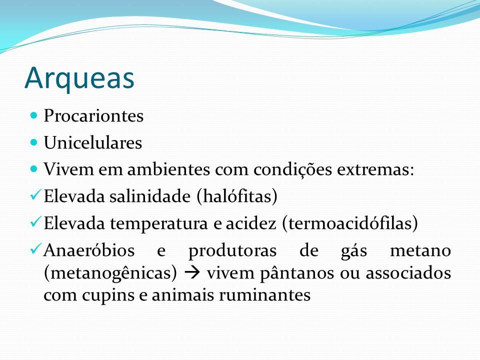 Arqueas Procariontes Unicelulares Vivem em ambientes com condições extremas: Elevada salinidade (halófitas) Elevada temperatura e acidez (termoacidófilas) Anaeróbios e produtoras de gás metano (metanogênicas) vivem pântanos ou associados com cupins e animais ruminantes