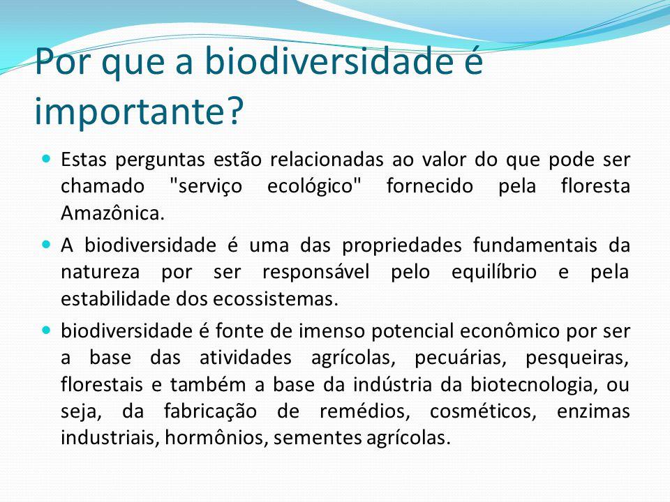 REINOSERESCARACTERÍSTICAS Monera BactériaUnicelulares Procariontes Autótrofo ou heterótrofo Arqueas Protoctista ProtozoáriosEucariontes Heterótrofo AlgasUnicelulares ou pluricelulares Autótrofos Fungi FungosUnicelular ou pluricelular Eucariontes Heterótrofo Plantae PlantasEucariontes Multicelulares Autótrofos fotossintetizantes Animalia AnimaisEucariontes Multicelulares Heterótrofo