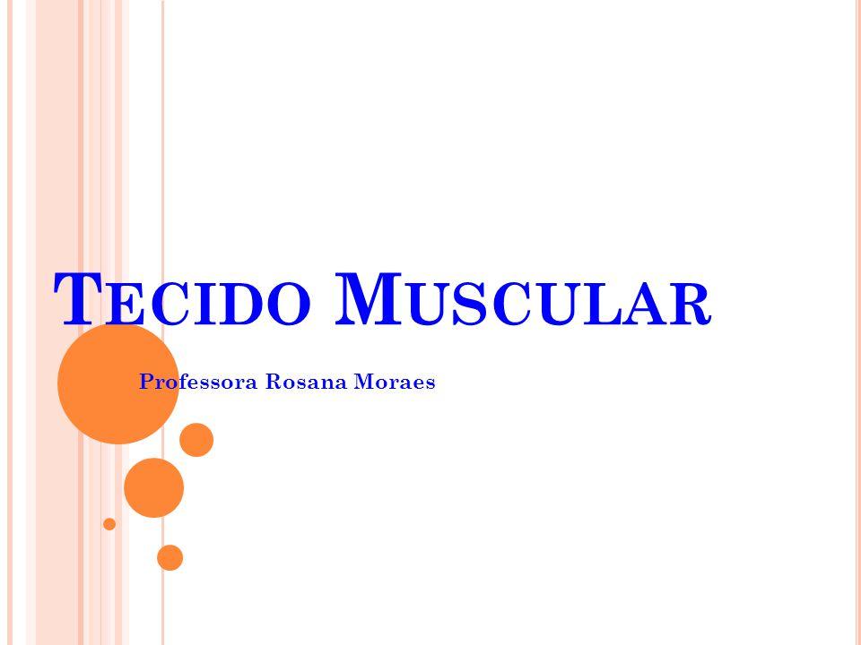 M ÚSCULO LISO Localização: parede do intestino, do útero, de artérias, do esôfago etc.