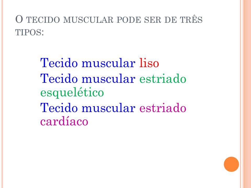 E NERGIA PARA A CONTRAÇÃO Sabemos que os músculos armazenam glicogênio.