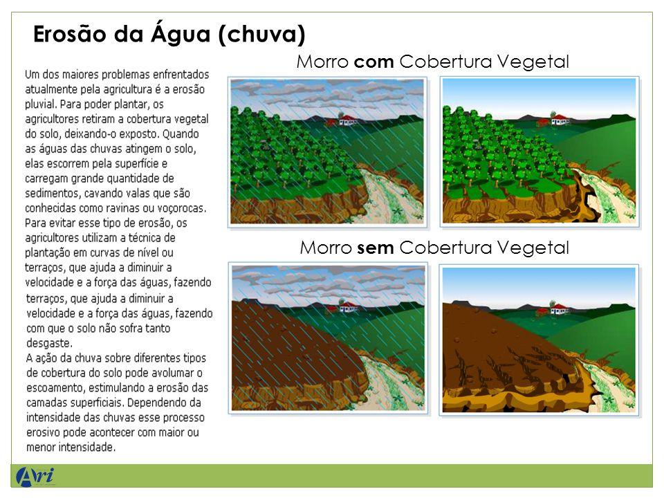 Erosão da Água (chuva) Morro com Cobertura Vegetal Morro sem Cobertura Vegetal