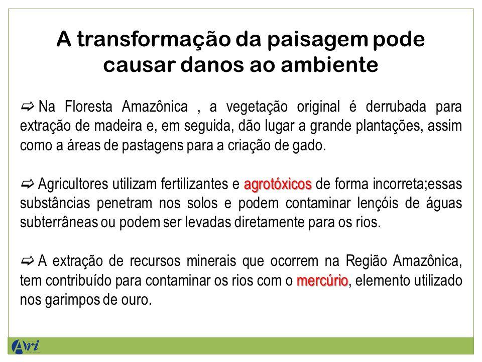 A transformação da paisagem pode causar danos ao ambiente Na Floresta Amazônica, a vegetação original é derrubada para extração de madeira e, em seguida, dão lugar a grande plantações, assim como a áreas de pastagens para a criação de gado.
