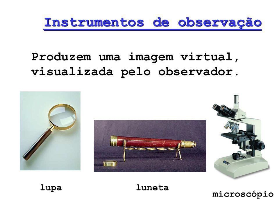 Instrumentos de observação Produzem uma imagem virtual, visualizada pelo observador. lupaluneta microscópio