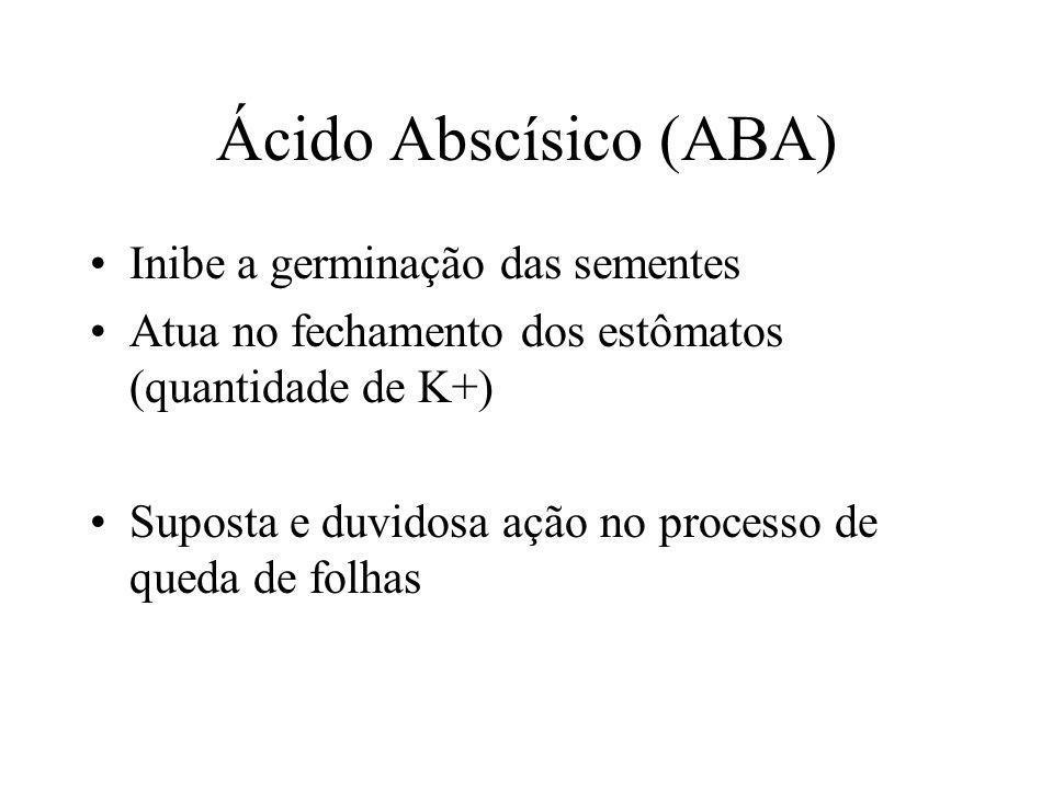 Ácido Abscísico (ABA) Inibe a germinação das sementes Atua no fechamento dos estômatos (quantidade de K+) Suposta e duvidosa ação no processo de queda