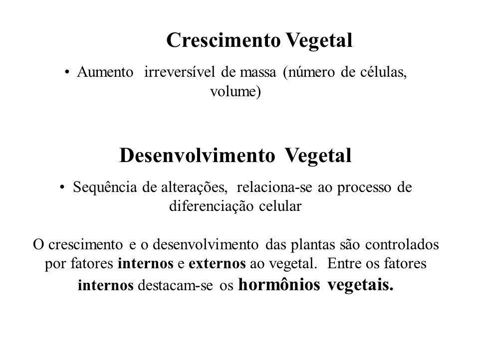 Crescimento Vegetal Aumento irreversível de massa (número de células, volume) Desenvolvimento Vegetal Sequência de alterações, relaciona-se ao process