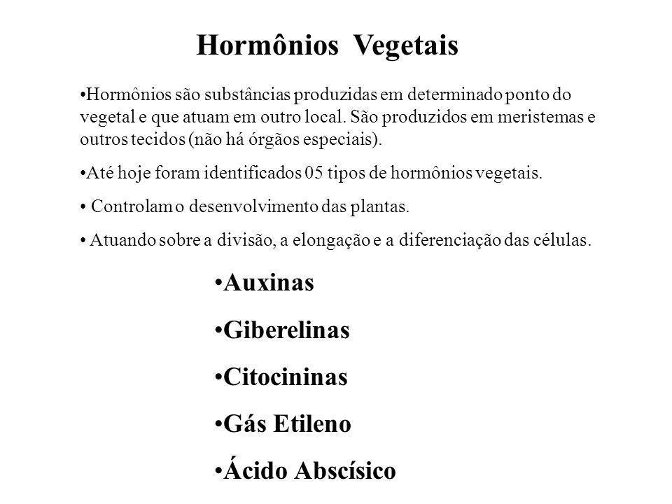 Hormônios Vegetais Hormônios são substâncias produzidas em determinado ponto do vegetal e que atuam em outro local. São produzidos em meristemas e out