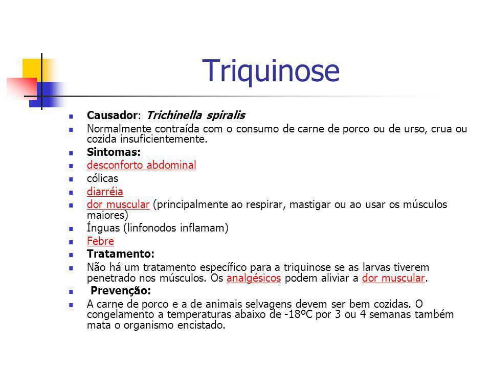 Triquinose Causador: Trichinella spiralis Normalmente contraída com o consumo de carne de porco ou de urso, crua ou cozida insuficientemente. Sintomas